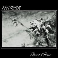 LimREC068 | Fellirium – Fleurs d'Hiver