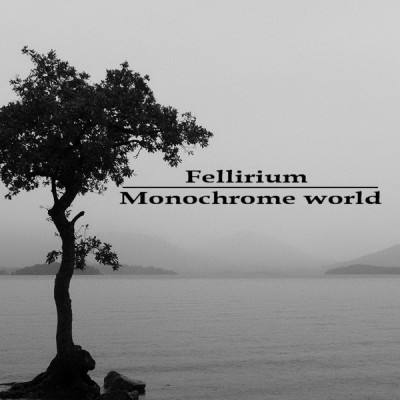 LimREC039 | Fellirium – Monochrome World