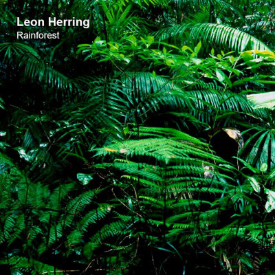 LimREC148 | Leon Herring – Rainforest